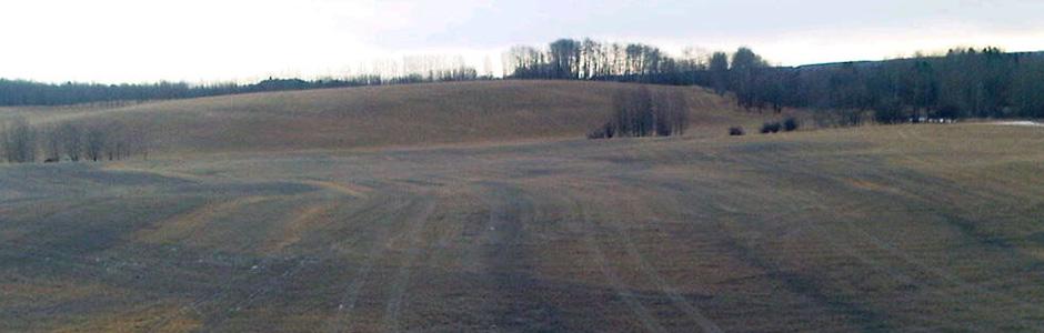 field2-940x300